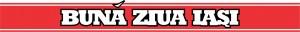 logo bzi